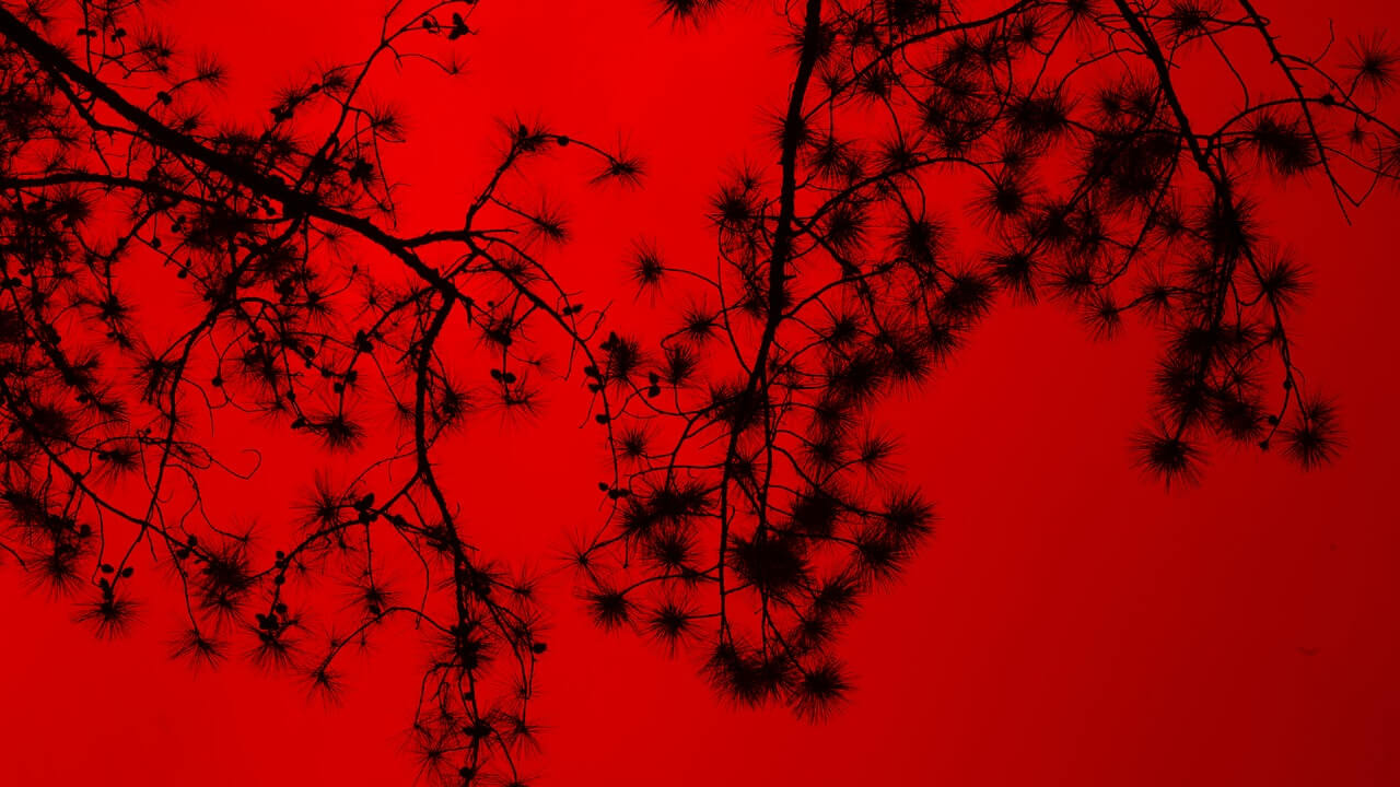 Colour Red Abstract GD topic